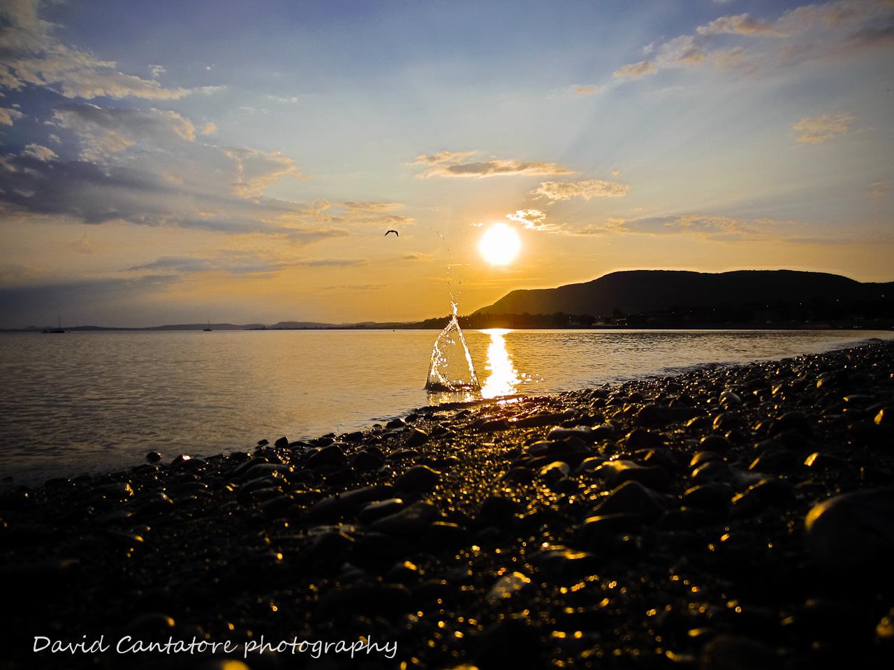 A splash of sunset